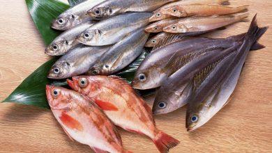 Photo of فوائد السمك: تعرف عليها