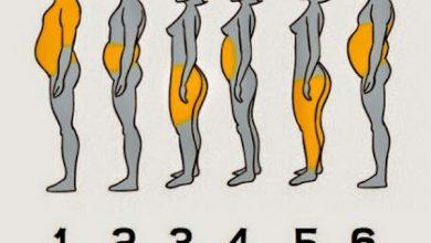 Photo of رجيم مناسب لشكل جسمك: جسم الكمثرى أم التفاحة أم الفلفل ؟