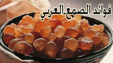 Photo of فوائد الصمغ العربي واستخداماته