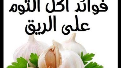 Photo of فوائد الثوم على الريق للتخسيس: حقيقة أم خرافة؟