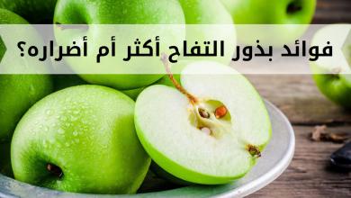 Photo of فوائد بذور التفاح: هل تفوق الأضرار؟