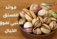 Photo of فوائد الفستق الحلبي: تفوق الخيال